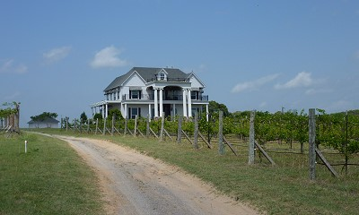 Hill Country Texas Winery Bed And Breakfast