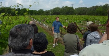 Winery U Wine Classes at Dry Comal Creek