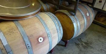 Brennan Vineyards - barrels