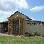 Darcy's Vineyard