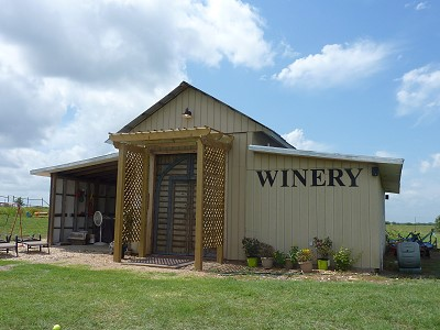 Darcy's Vineyard - outside