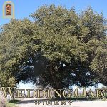 San Saba Wine Cellars is now Wedding Oak Winery