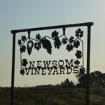 2013 Newsom Grape Day and High Plains Vineyard Tour