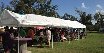 A Tale of Two Cities (and Wine Festivals)