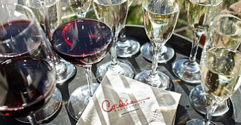 2013 Sugar Land Wine & Food Affair