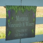 Moravia Vineyard & Winery