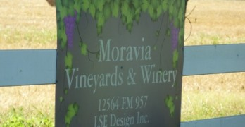 Moravia Vineyard & Winery - sign