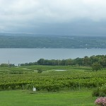 Finger Lake Wineries