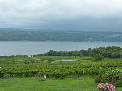 Vineyards over Seneca Lake