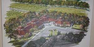 Mitas Hill - plans