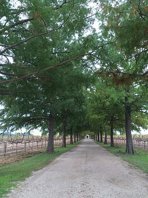 Fall Creek - entrance