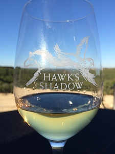 Hawk's Shadow - glass