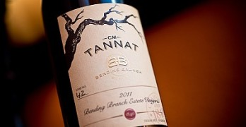 2011 Bending Branch Tannat