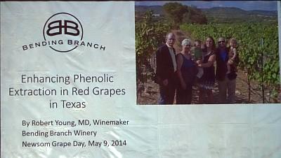 Grape Day - Bending Branch