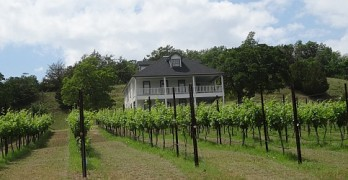 BarnHaus Vineyards with a Winery Preview