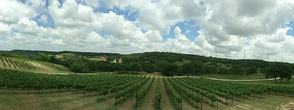BarnHaus Vineyards