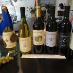Angelita Vineyard and Winery