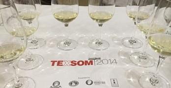TEXSOM - tasting at a seminar