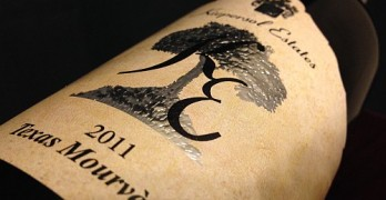Kiepersol Estates Mourvèdre 2011