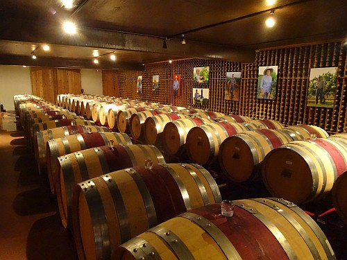 Becker Vineyard's Library Barrels