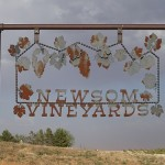 TWL008: Neal Newsom of Newsom Vineyards