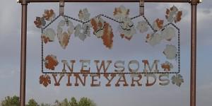 Newsom Vineyards