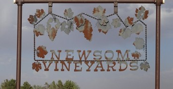 Newsom Vineyards