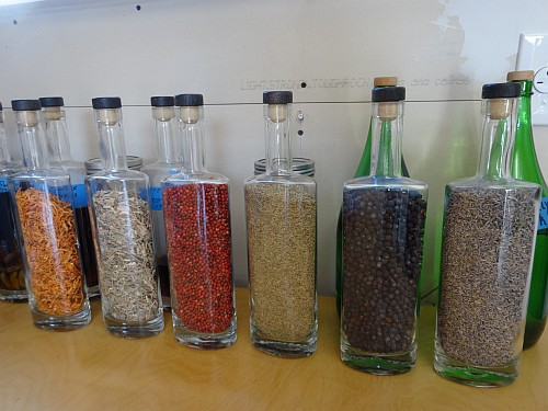 Botanicals used in Revolution Spirits gin
