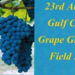 2015 Gulf Coast Grape Grower Field Day