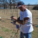 TWL013: Dave Potter of Crump Valley Vineyards