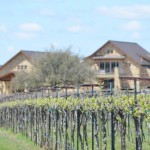 Perissos Vineyards Takes 3 Gold Medals at TEXSOM International Wine Awards