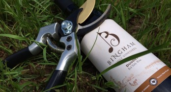 Review of Bingham Family Vineyards Dugout
