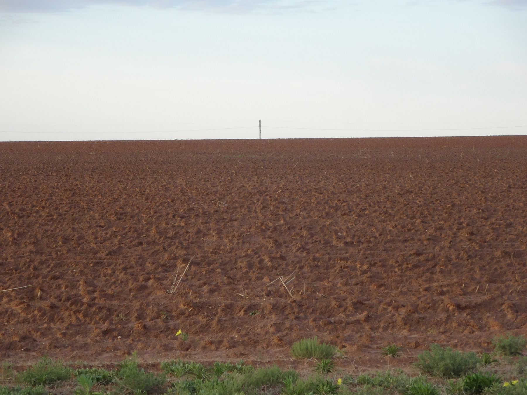 Red dirt and flat land