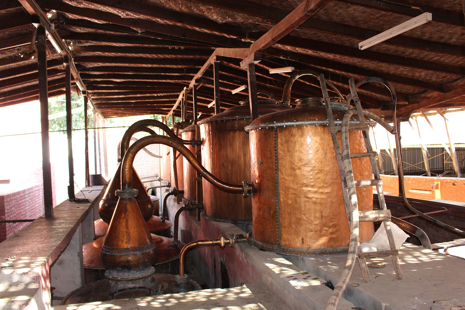 Stills at Bodegas Vista Alegre