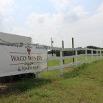 Waco Winery & Vineyards