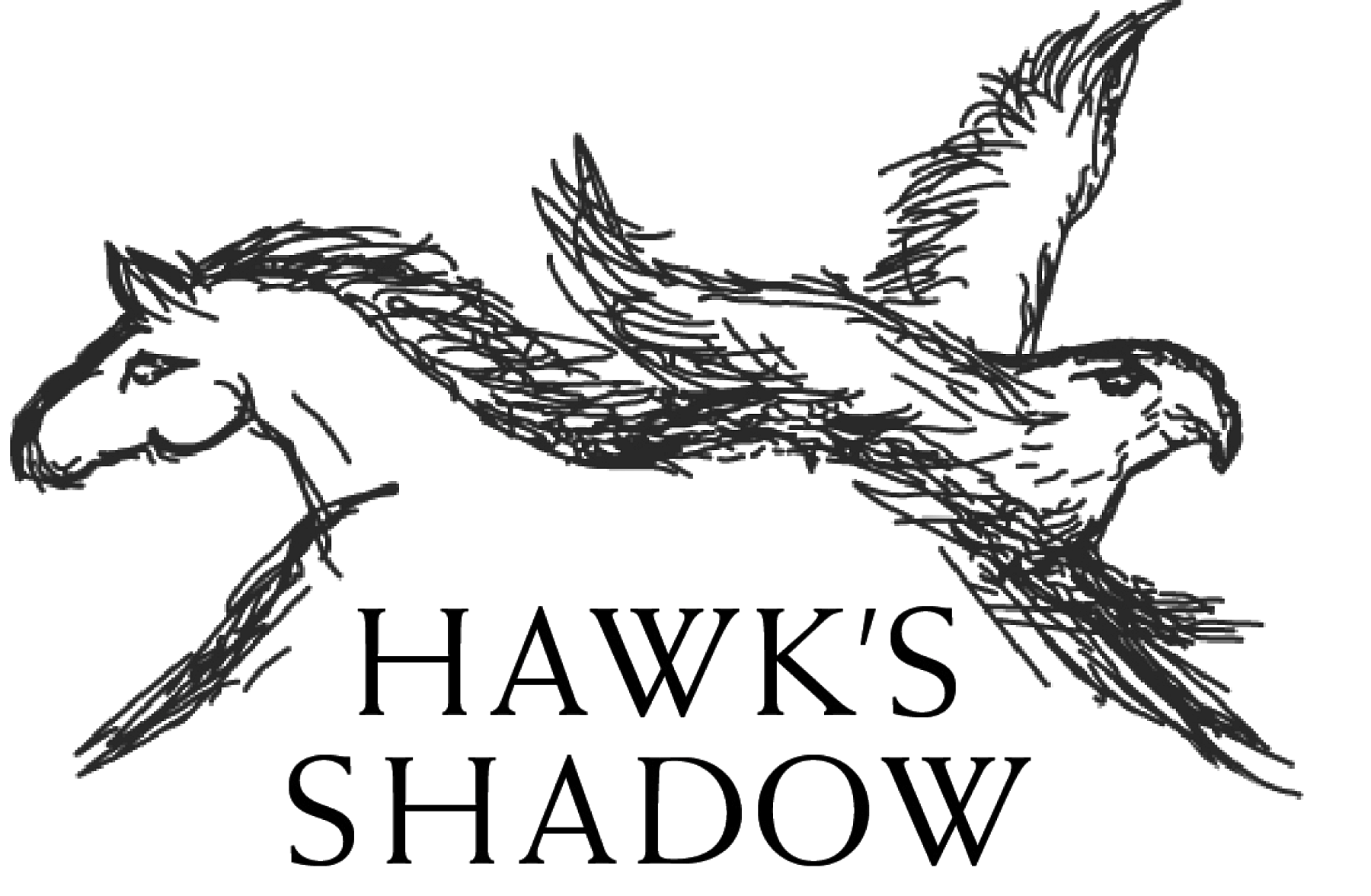 Hawk's Shadow logo