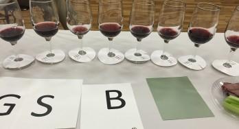 Lone Star International Wine Competition judging