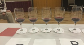 Judging a wine flight