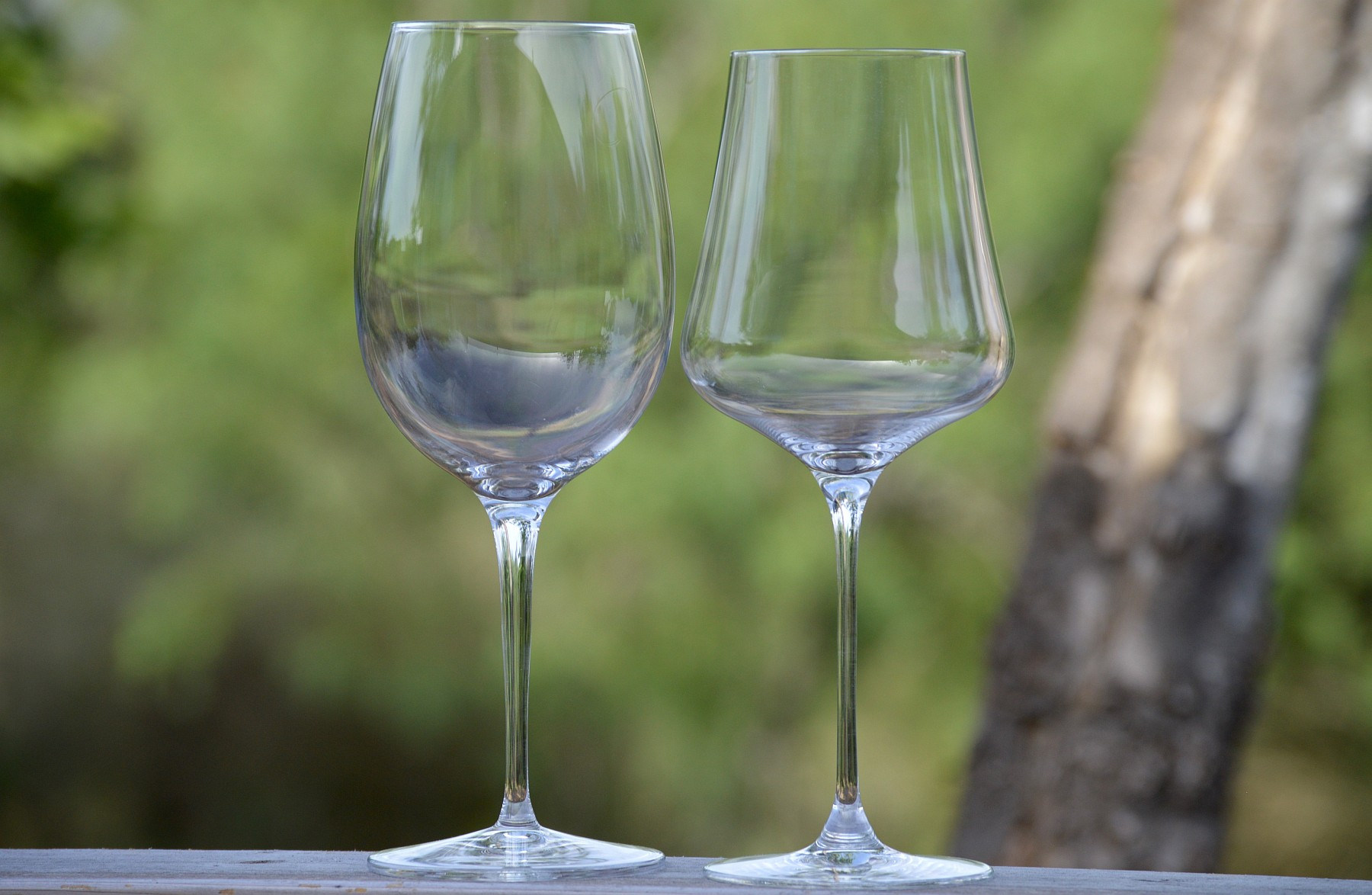 Luigi Bormioli on left and Gabriel-Glas on right
