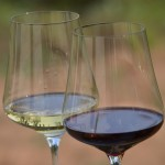 Gabriel-Glas – Stemware for every Occasion