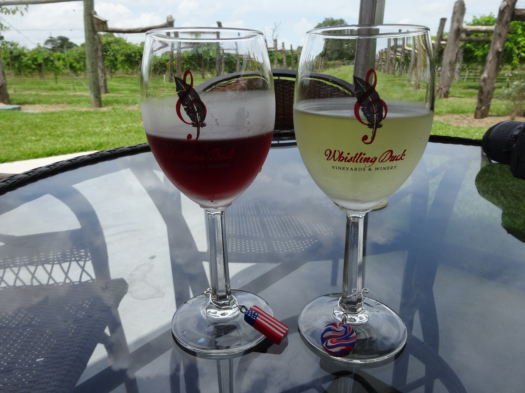 Whistling Duck Vineyards & Winery