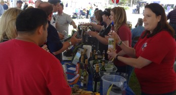 A Preview of some 2015 October Wine Festivals and Wine Trails