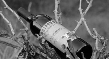 Driftwood Estate Winery Longhorn Red 2012 bottle