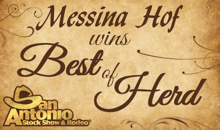 Messina Hof Best of Herd