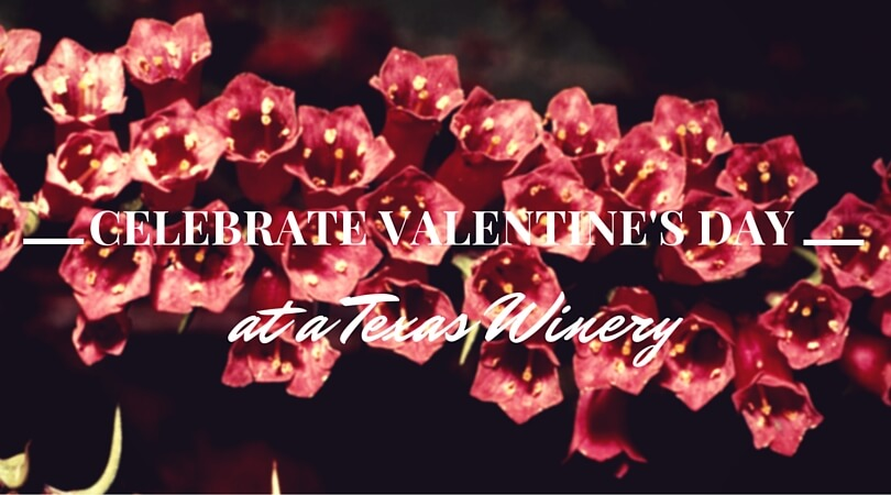 Celebrate Valentine's Day at a Texas Winery