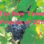 Top New Texas Wineries of 2015