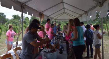 Texas Wine Revolution - one tent