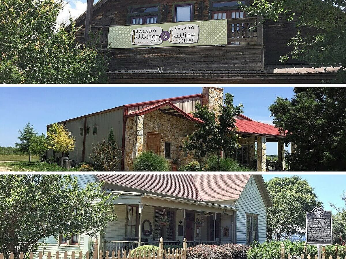 Salado Wine Seller, Red Wing Dove, Cross Timbers Winery