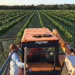 Mechanical Harvesting in the Texas Hill Country video