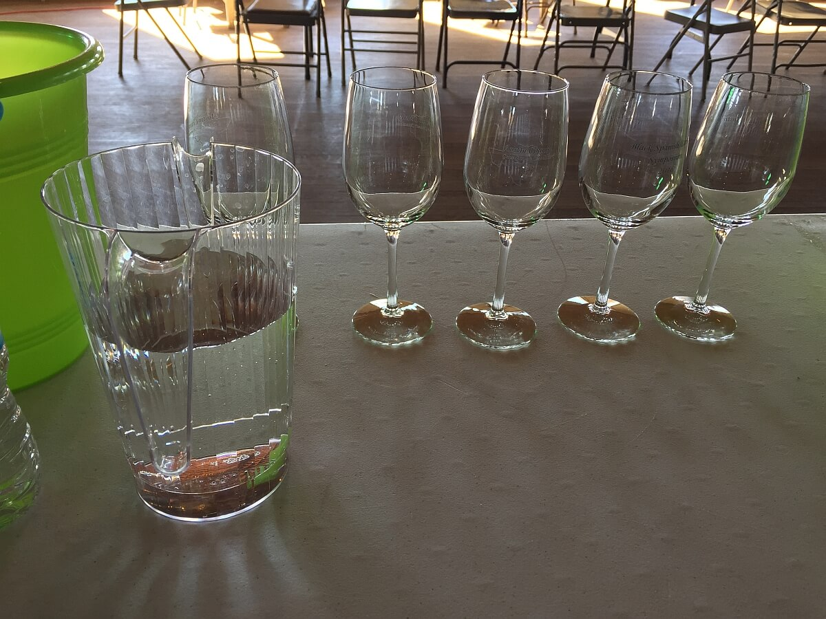 Blind tasting glasses